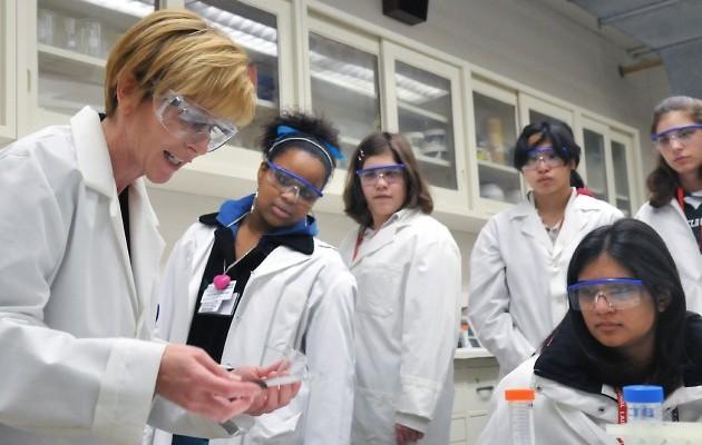 The Changing Landscape of STEM
