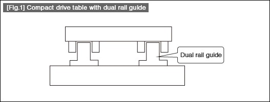 Dual rail guide example